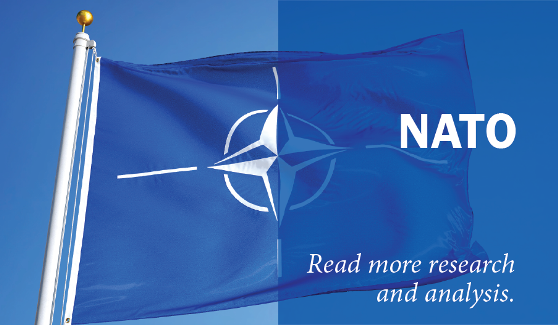 NATO Cybersecurity: A Roadmap to Resilience | The German